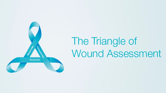 The Triangle of Wound Assessment